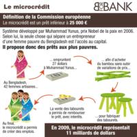 Ecoview n°14 : Le microcrédit
